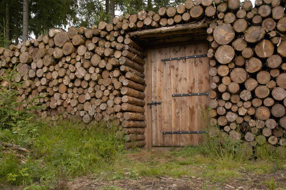 Naturgewalten 2, Braunlage, LandArt