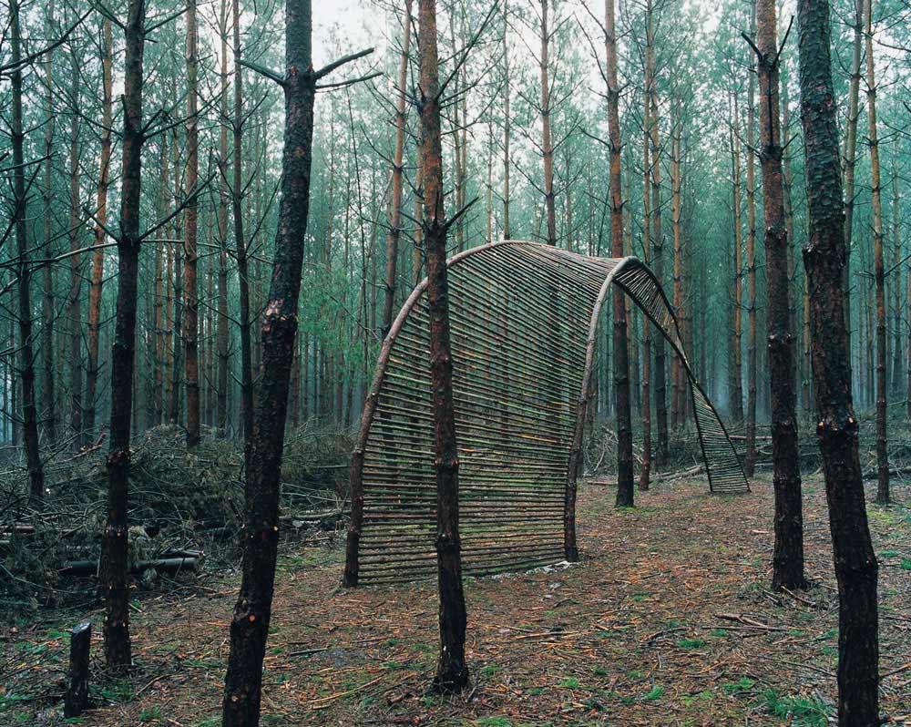 Waldbogen 1, Nienburg, LandArt